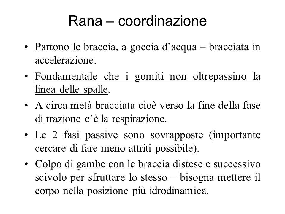 Rana – coordinazione Partono le braccia, a goccia dacqua – bracciata in accelerazione.