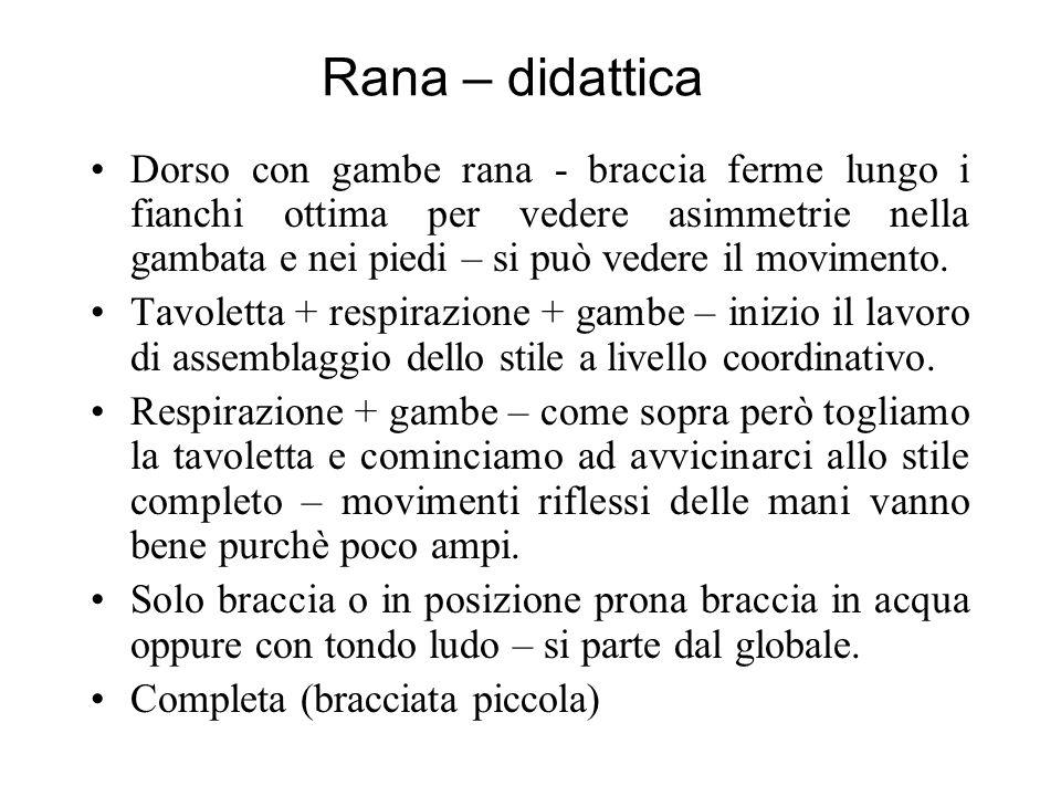 Rana – didattica Dorso con gambe rana - braccia ferme lungo i fianchi ottima per vedere asimmetrie nella gambata e nei piedi – si può vedere il movimento.