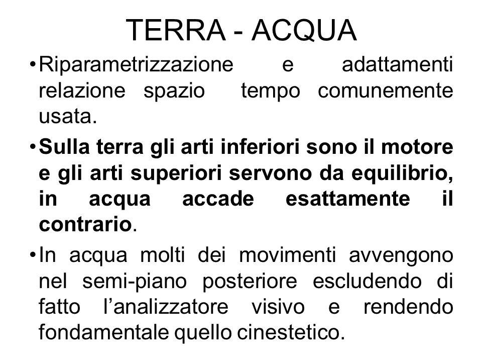 TERRA - ACQUA Riparametrizzazione e adattamenti relazione spazio tempo comunemente usata. Sulla terra gli arti inferiori sono il motore e gli arti sup