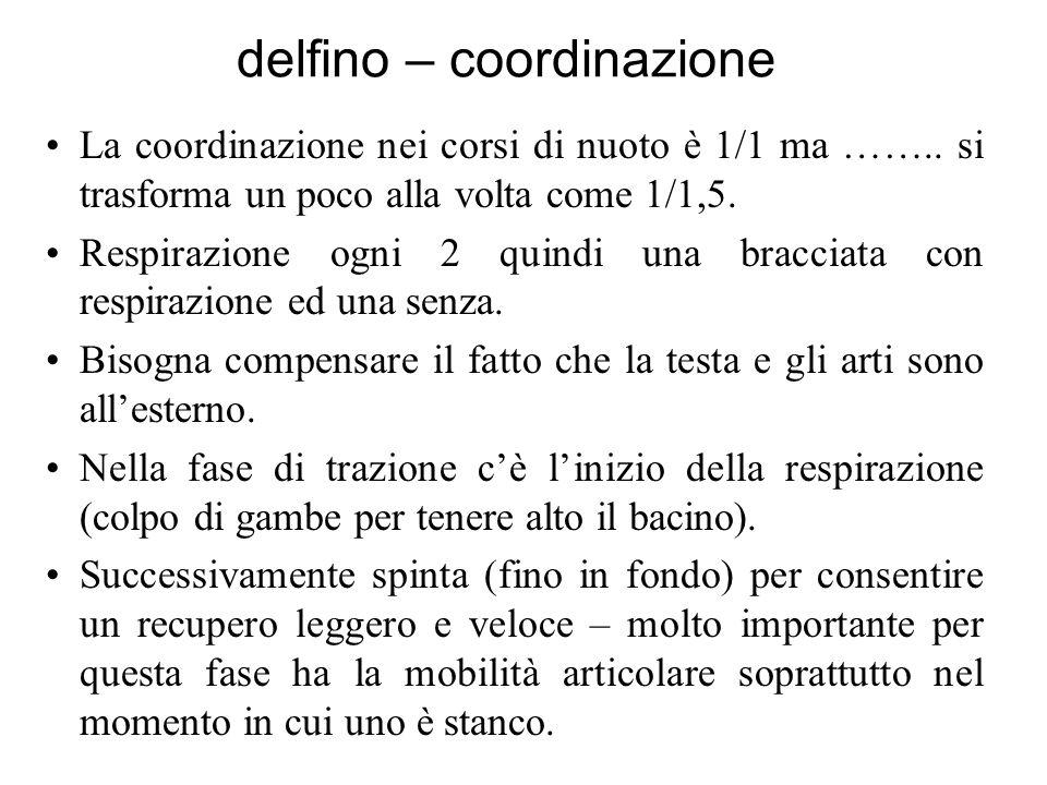 delfino – coordinazione La coordinazione nei corsi di nuoto è 1/1 ma …….. si trasforma un poco alla volta come 1/1,5. Respirazione ogni 2 quindi una b