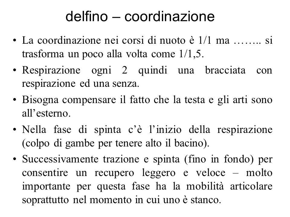 delfino – coordinazione La coordinazione nei corsi di nuoto è 1/1 ma ……..
