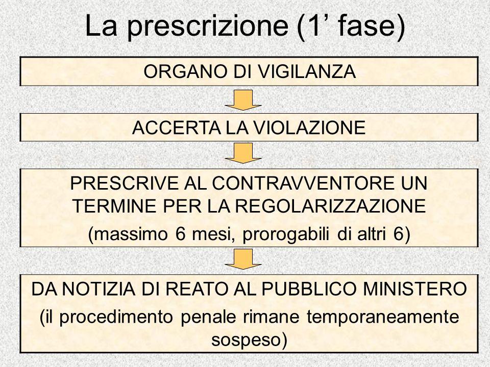 La prescrizione (1 fase) ORGANO DI VIGILANZA ACCERTA LA VIOLAZIONE PRESCRIVE AL CONTRAVVENTORE UN TERMINE PER LA REGOLARIZZAZIONE (massimo 6 mesi, pro