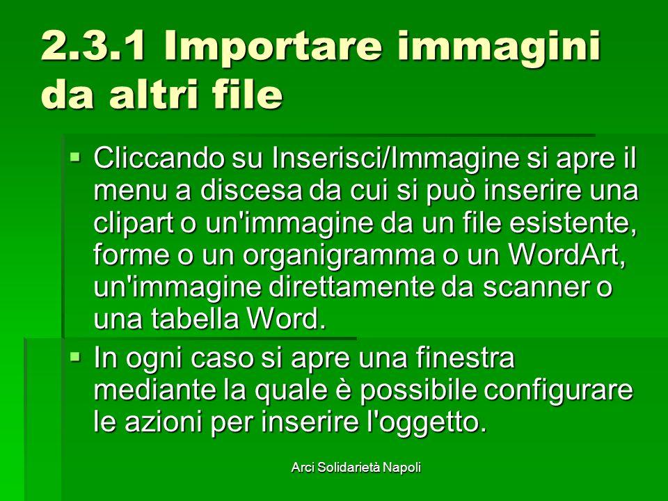 Arci Solidarietà Napoli 2.3.1 Importare immagini da altri file Cliccando su Inserisci/Immagine si apre il menu a discesa da cui si può inserire una cl