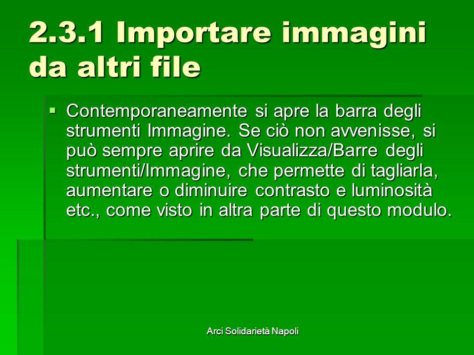 Arci Solidarietà Napoli 2.3.1 Importare immagini da altri file Contemporaneamente si apre la barra degli strumenti Immagine. Se ciò non avvenisse, si