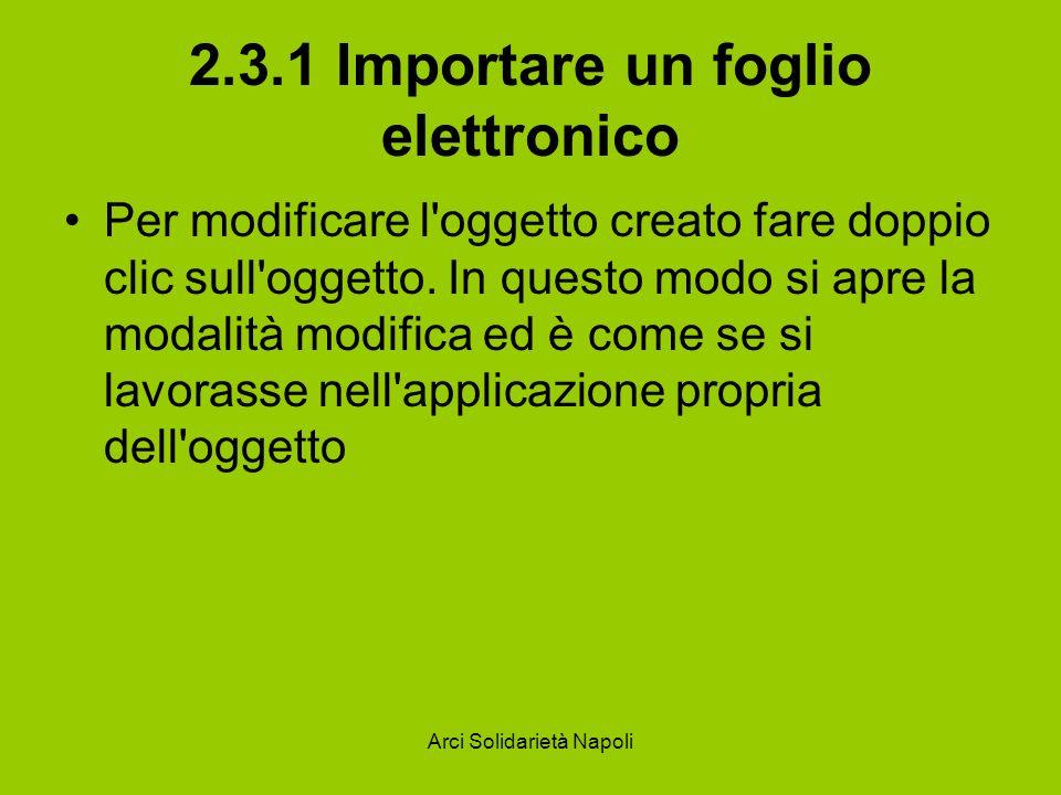 Arci Solidarietà Napoli 2.3.1 Importare un foglio elettronico Per modificare l'oggetto creato fare doppio clic sull'oggetto. In questo modo si apre la