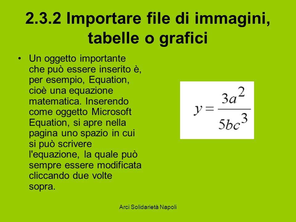 Arci Solidarietà Napoli 2.3.2 Importare file di immagini, tabelle o grafici Un oggetto importante che può essere inserito è, per esempio, Equation, cioè una equazione matematica.