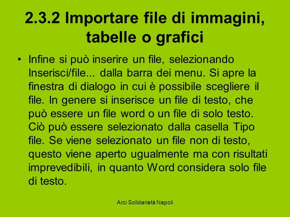 Arci Solidarietà Napoli 2.3.2 Importare file di immagini, tabelle o grafici Infine si può inserire un file, selezionando Inserisci/file... dalla barra