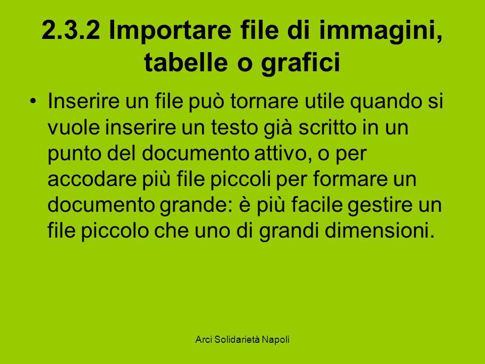 Arci Solidarietà Napoli 2.3.2 Importare file di immagini, tabelle o grafici Inserire un file può tornare utile quando si vuole inserire un testo già s
