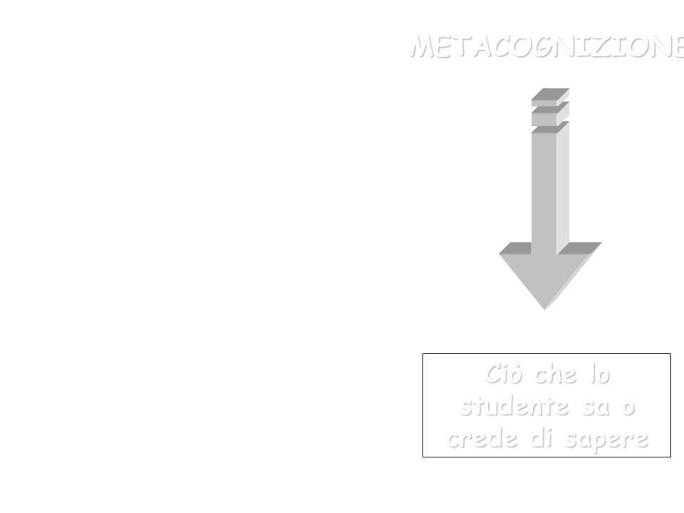 METACOGNIZIONE Ciò che lo studente sa o crede di sapere