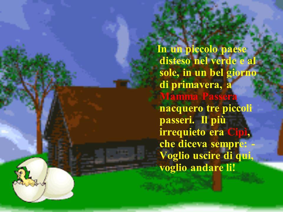 In un piccolo paese disteso nel verde e al sole, in un bel giorno di primavera, a Mamma Passera nacquero tre piccoli passeri. Il più irrequieto era Ci