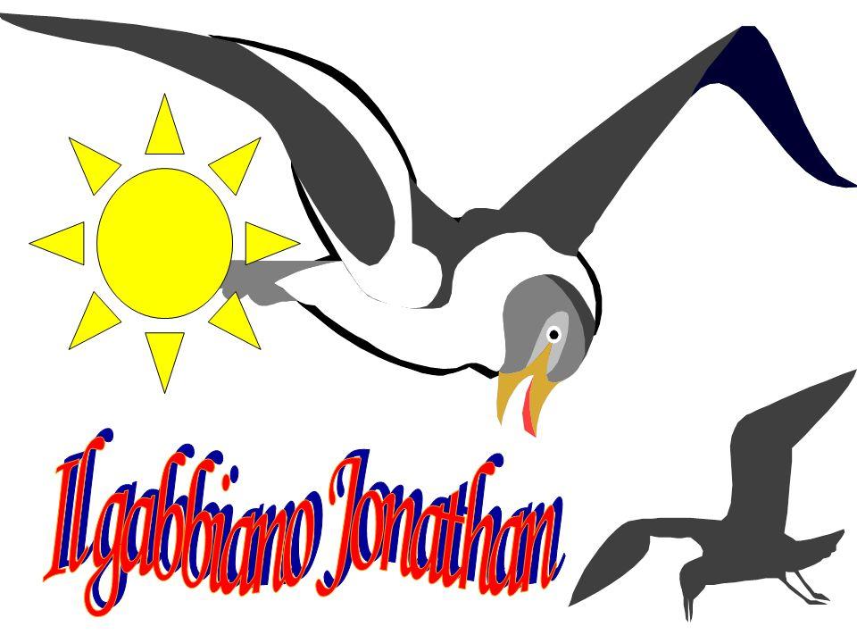 IL RACCONTO Il gabbiano Jonathan decise di imparare a volare… TEMPO Una mattina… LUOGO Il mare PERSONAGGI Il gabbiano Jonathan, papà, mamma, lo stormo, lanziano gabbiano