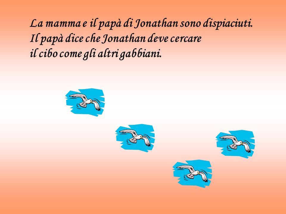 La mamma e il papà di Jonathan sono dispiaciuti. Il papà dice che Jonathan deve cercare il cibo come gli altri gabbiani.