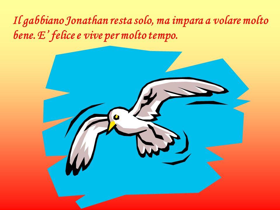 Il gabbiano Jonathan resta solo, ma impara a volare molto bene. E felice e vive per molto tempo.