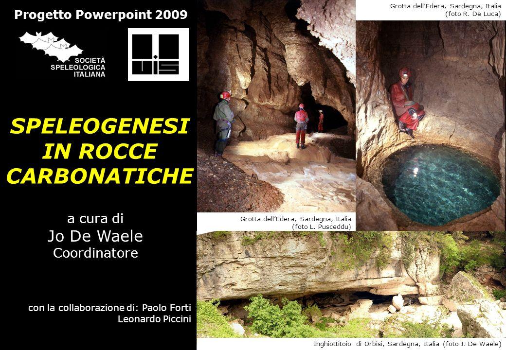 SPELEOGENESI IN ROCCE CARBONATICHE a cura di Jo De Waele Coordinatore con la collaborazione di: Paolo Forti Leonardo Piccini Progetto Powerpoint 2009