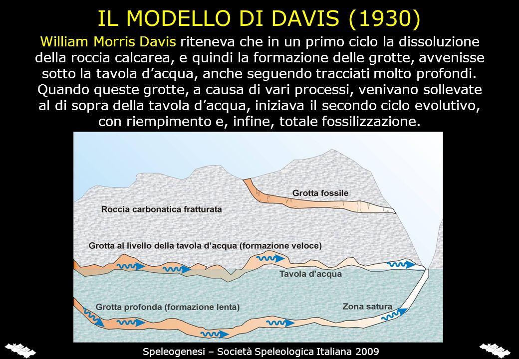 IL MODELLO DI DAVIS (1930) William Morris Davis riteneva che in un primo ciclo la dissoluzione della roccia calcarea, e quindi la formazione delle grotte, avvenisse sotto la tavola dacqua, anche seguendo tracciati molto profondi.
