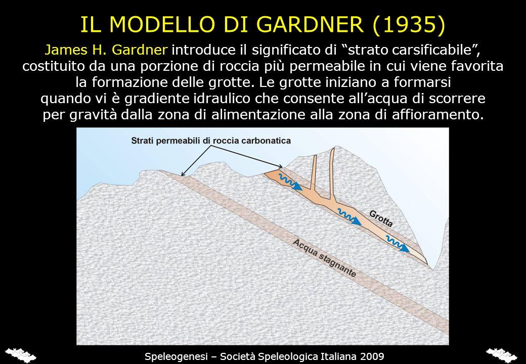 IL MODELLO DI GARDNER (1935) James H. Gardner introduce il significato di strato carsificabile, costituito da una porzione di roccia più permeabile in