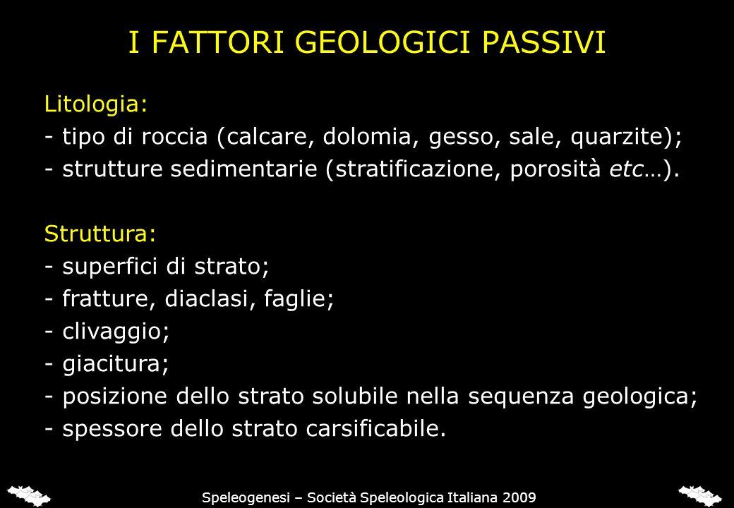 I FATTORI GEOLOGICI PASSIVI Litologia: - tipo di roccia (calcare, dolomia, gesso, sale, quarzite); - strutture sedimentarie (stratificazione, porosità