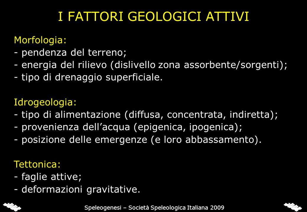 I FATTORI GEOLOGICI ATTIVI Morfologia: - pendenza del terreno; - energia del rilievo (dislivello zona assorbente/sorgenti); - tipo di drenaggio superf