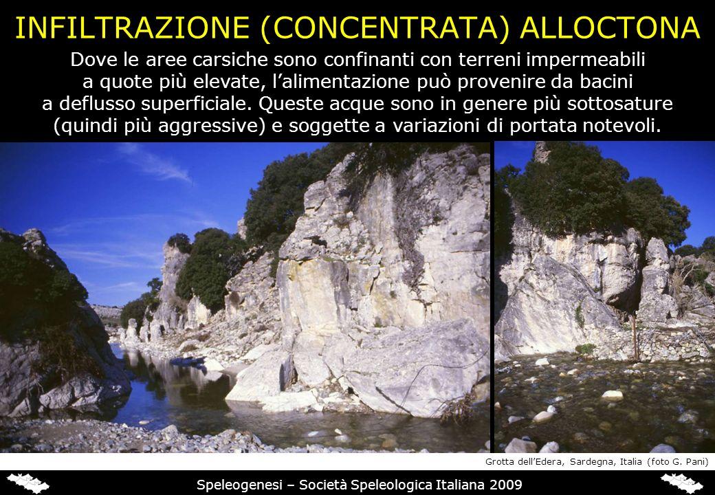 INFILTRAZIONE (CONCENTRATA) ALLOCTONA Speleogenesi – Società Speleologica Italiana 2009 Dove le aree carsiche sono confinanti con terreni impermeabili