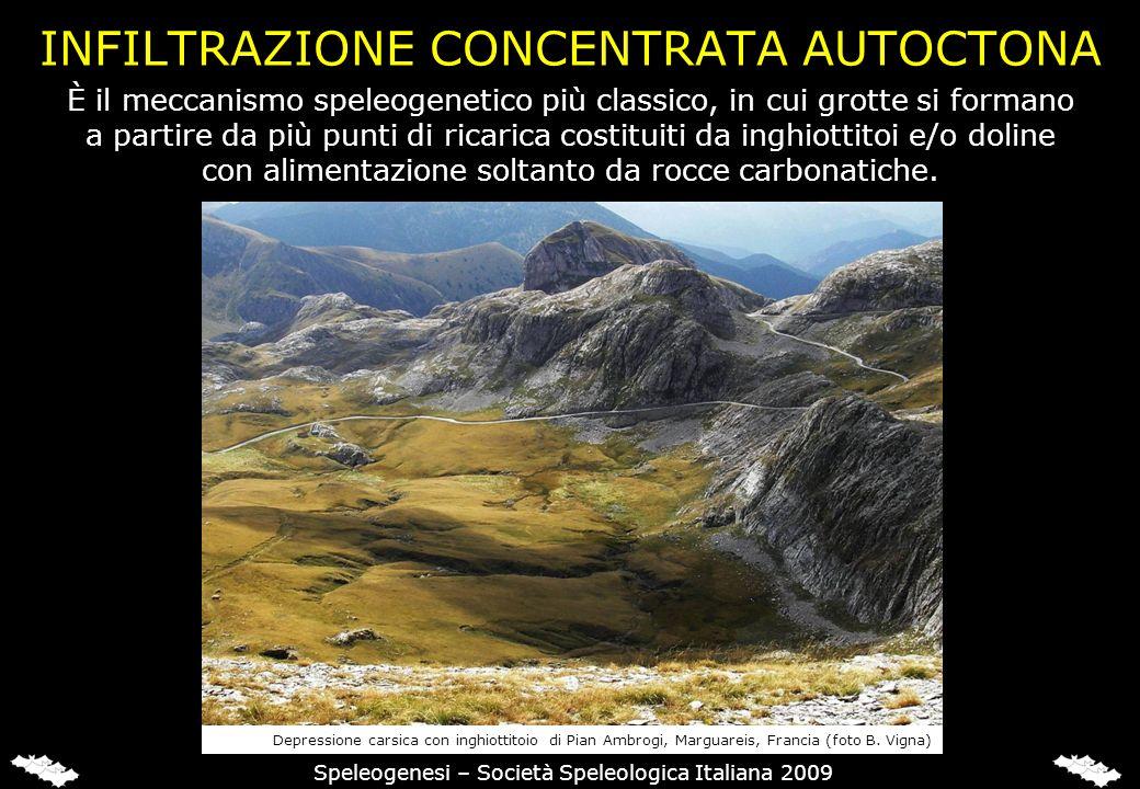 INFILTRAZIONE CONCENTRATA AUTOCTONA Speleogenesi – Società Speleologica Italiana 2009 È il meccanismo speleogenetico più classico, in cui grotte si fo