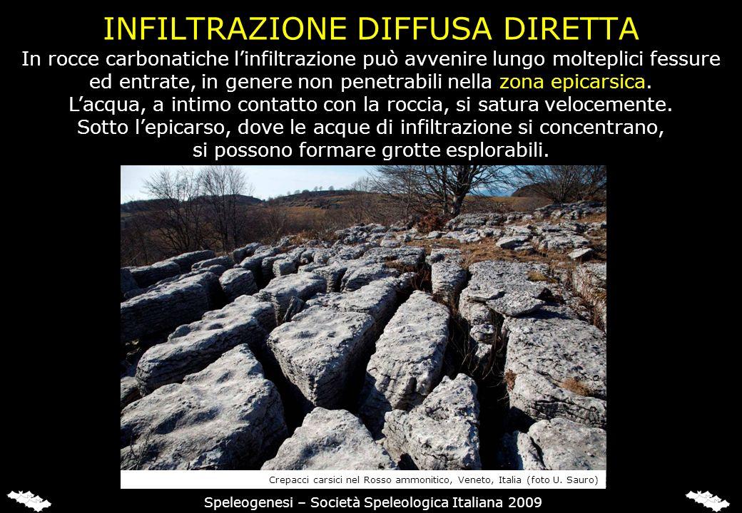 INFILTRAZIONE DIFFUSA DIRETTA Speleogenesi – Società Speleologica Italiana 2009 In rocce carbonatiche linfiltrazione può avvenire lungo molteplici fessure ed entrate, in genere non penetrabili nella zona epicarsica.