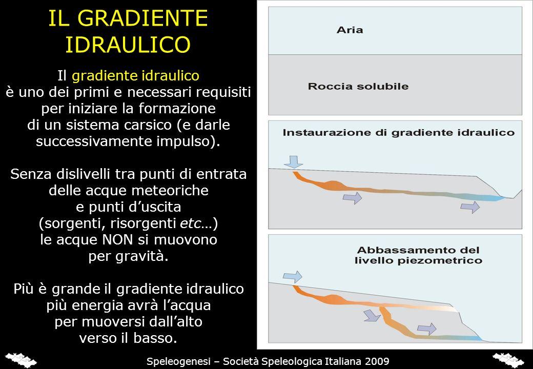 IL GRADIENTE IDRAULICO Speleogenesi – Società Speleologica Italiana 2009 Il gradiente idraulico è uno dei primi e necessari requisiti per iniziare la formazione di un sistema carsico (e darle successivamente impulso).