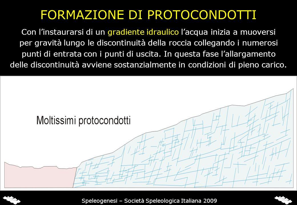 FORMAZIONE DI PROTOCONDOTTI Speleogenesi – Società Speleologica Italiana 2009 Con linstaurarsi di un gradiente idraulico lacqua inizia a muoversi per