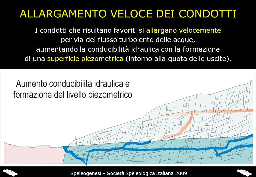ALLARGAMENTO VELOCE DEI CONDOTTI Speleogenesi – Società Speleologica Italiana 2009 I condotti che risultano favoriti si allargano velocemente per via del flusso turbolento delle acque, aumentando la conducibilità idraulica con la formazione di una superficie piezometrica (intorno alla quota delle uscite).