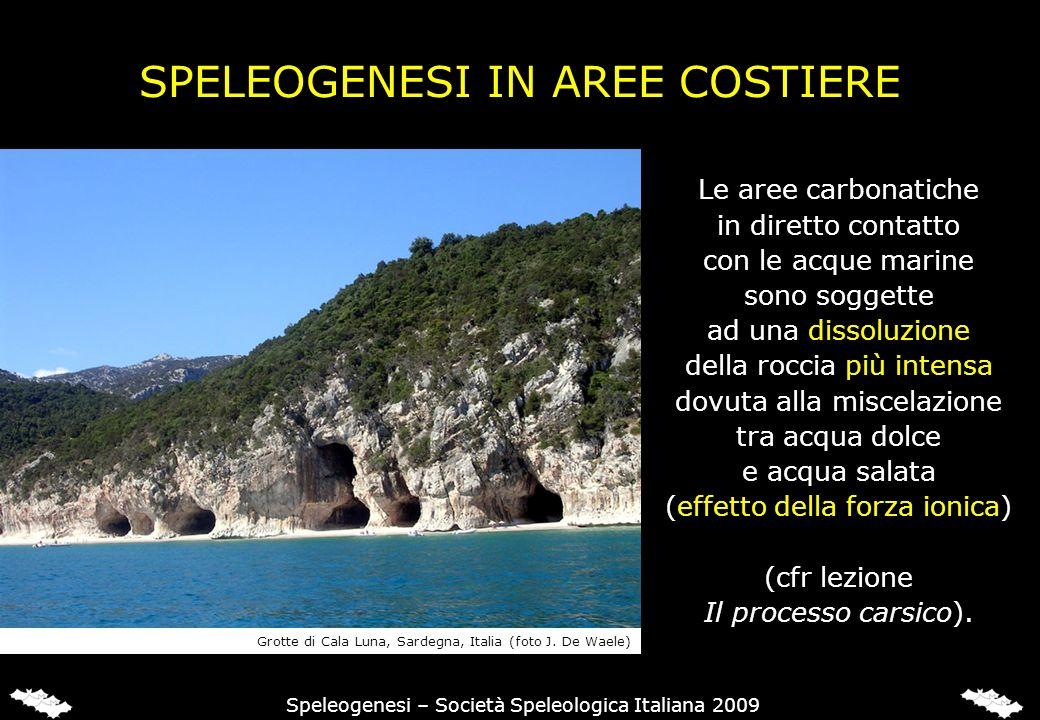 SPELEOGENESI IN AREE COSTIERE Le aree carbonatiche in diretto contatto con le acque marine sono soggette ad una dissoluzione della roccia più intensa