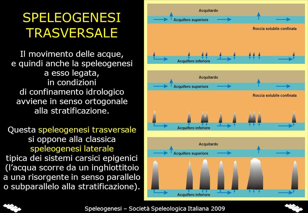 SPELEOGENESI TRASVERSALE Il movimento delle acque, e quindi anche la speleogenesi a esso legata, in condizioni di confinamento idrologico avviene in senso ortogonale alla stratificazione.
