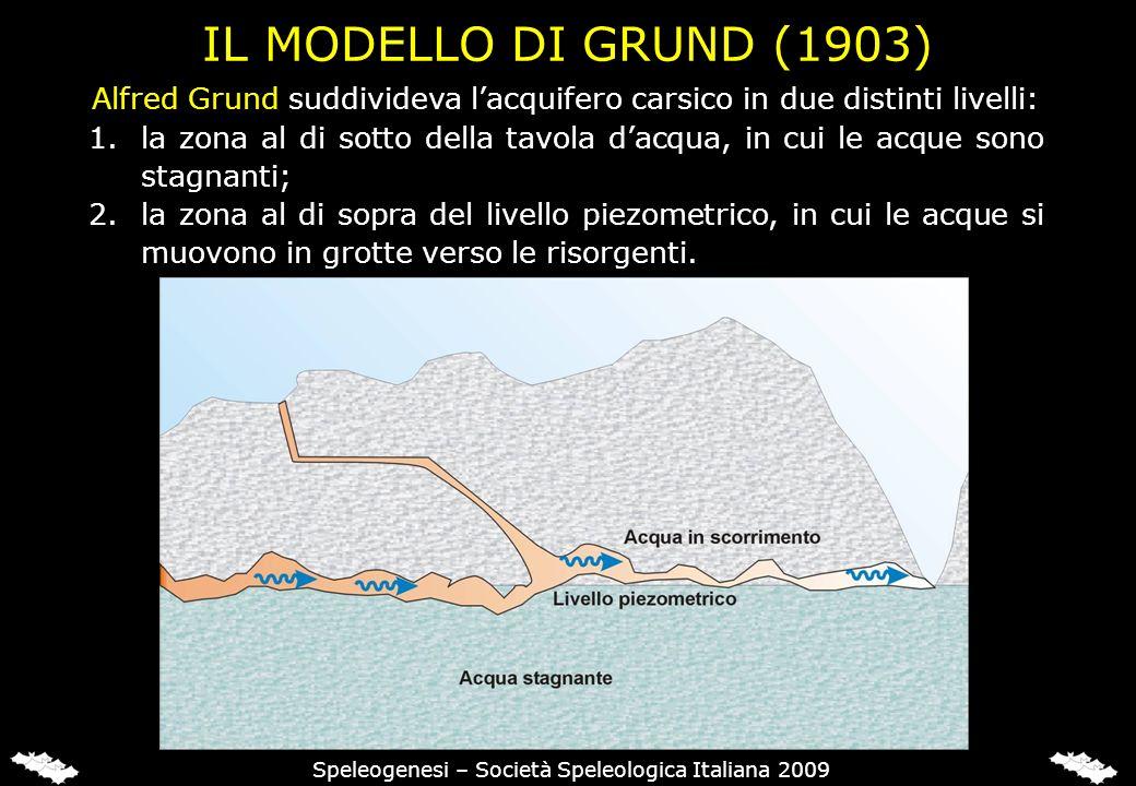 IL MODELLO DI GRUND (1903) Alfred Grund suddivideva lacquifero carsico in due distinti livelli: 1.la zona al di sotto della tavola dacqua, in cui le acque sono stagnanti; 2.la zona al di sopra del livello piezometrico, in cui le acque si muovono in grotte verso le risorgenti.