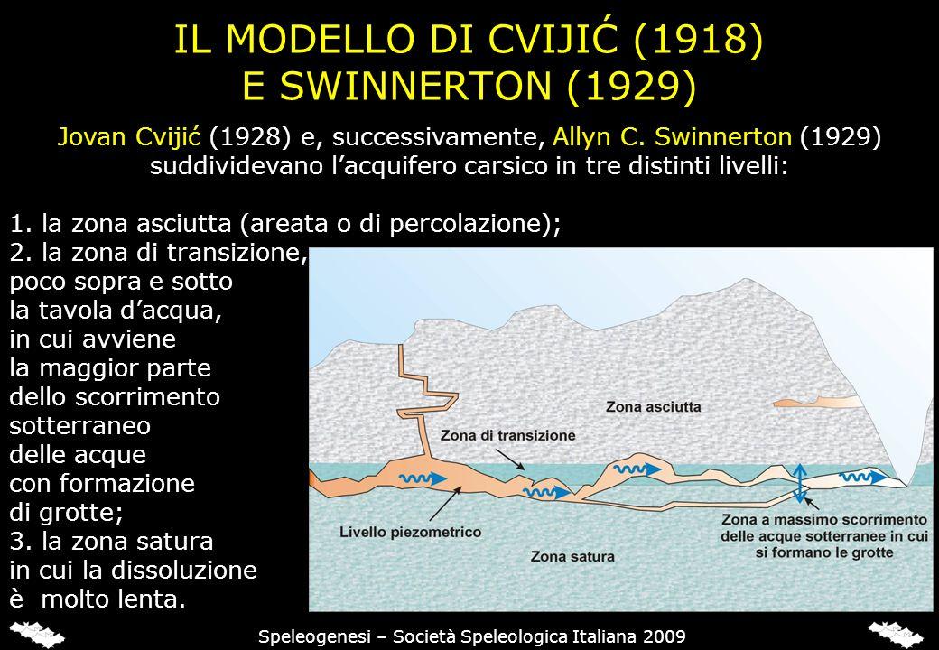 IL MODELLO DI CVIJIĆ (1918) E SWINNERTON (1929) Speleogenesi – Società Speleologica Italiana 2009 Jovan Cvijić (1928) e, successivamente, Allyn C. Swi