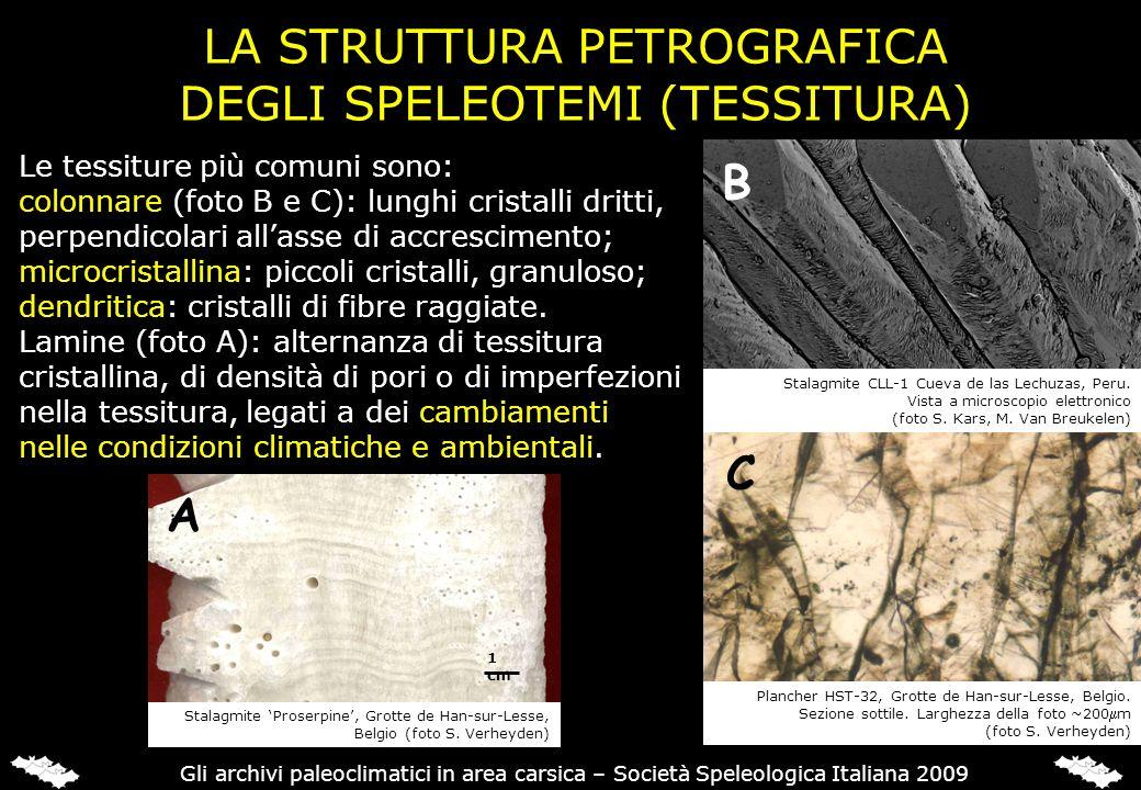 LA STRUTTURA PETROGRAFICA DEGLI SPELEOTEMI (TESSITURA) Le tessiture più comuni sono: colonnare (foto B e C): lunghi cristalli dritti, perpendicolari a