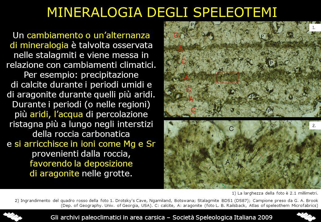 MINERALOGIA DEGLI SPELEOTEMI Un cambiamento o unalternanza di mineralogia è talvolta osservata nelle stalagmiti e viene messa in relazione con cambiam
