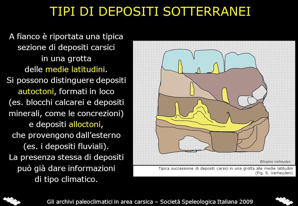 Gli archivi paleoclimatici in area carsica – Società Speleologica Italiana 2009 TIPI DI DEPOSITI SOTTERRANEI A fianco è riportata una tipica sezione d