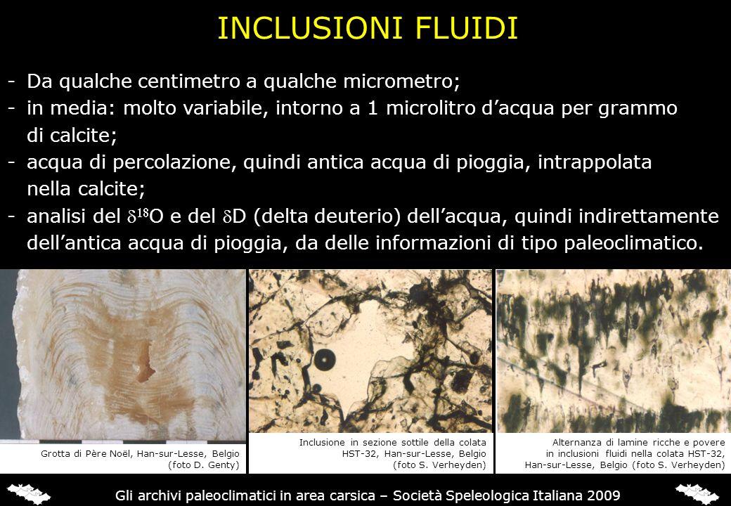 INCLUSIONI FLUIDI -Da qualche centimetro a qualche micrometro; -in media: molto variabile, intorno a 1 microlitro dacqua per grammo di calcite; -acqua