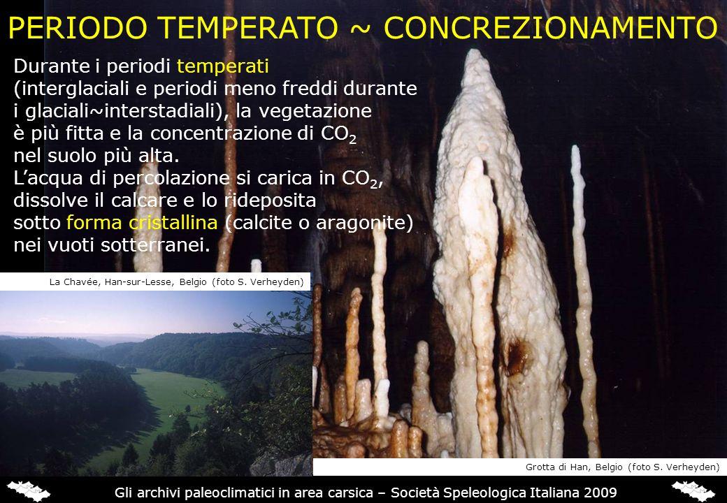 PERIODO TEMPERATO ~ CONCREZIONAMENTO Grotta di Han, Belgio (foto S. Verheyden) Durante i periodi temperati (interglaciali e periodi meno freddi durant