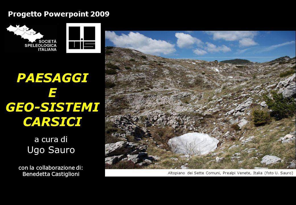 PAESAGGI E GEO-SISTEMI CARSICI a cura di Ugo Sauro con la collaborazione di: Benedetta Castiglioni Progetto Powerpoint 2009 Altopiano dei Sette Comuni