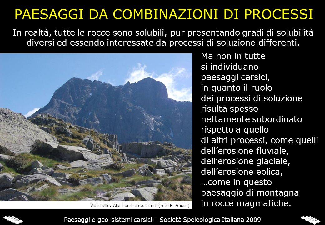 PAESAGGI DA COMBINAZIONI DI PROCESSI Ma non in tutte si individuano paesaggi carsici, in quanto il ruolo dei processi di soluzione risulta spesso nett