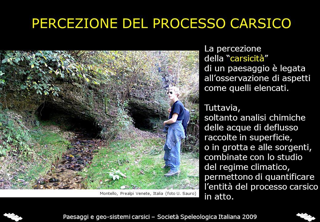 PERCEZIONE DEL PROCESSO CARSICO La percezione della carsicità di un paesaggio è legata allosservazione di aspetti come quelli elencati. Tuttavia, solt
