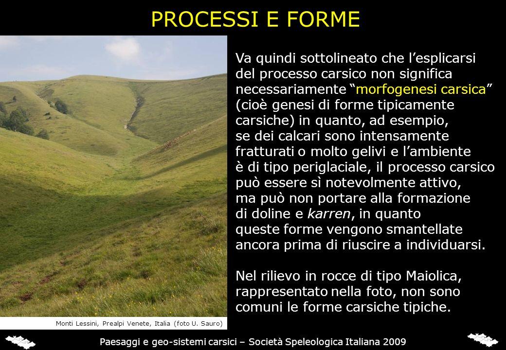 PROCESSI E FORME Va quindi sottolineato che lesplicarsi del processo carsico non significa necessariamente morfogenesi carsica (cioè genesi di forme t