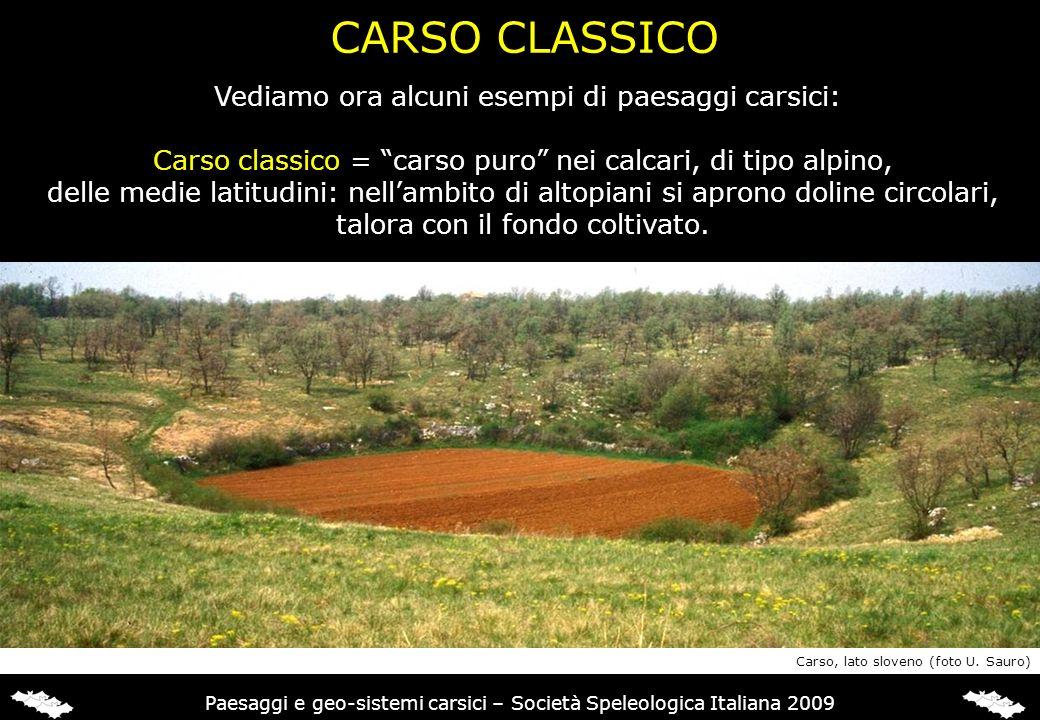 Vediamo ora alcuni esempi di paesaggi carsici: Carso classico = carso puro nei calcari, di tipo alpino, delle medie latitudini: nellambito di altopian