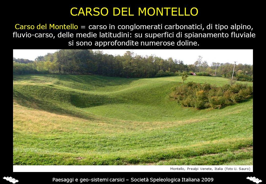 CARSO DEL MONTELLO Carso del Montello = carso in conglomerati carbonatici, di tipo alpino, fluvio-carso, delle medie latitudini: su superfici di spian