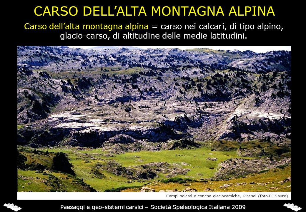 Carso dellalta montagna alpina = carso nei calcari, di tipo alpino, glacio-carso, di altitudine delle medie latitudini. CARSO DELLALTA MONTAGNA ALPINA