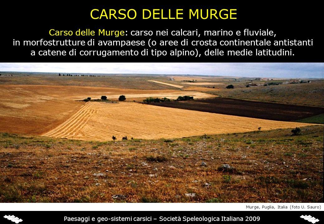 CARSO DELLE MURGE Carso delle Murge: carso nei calcari, marino e fluviale, in morfostrutture di avampaese (o aree di crosta continentale antistanti a