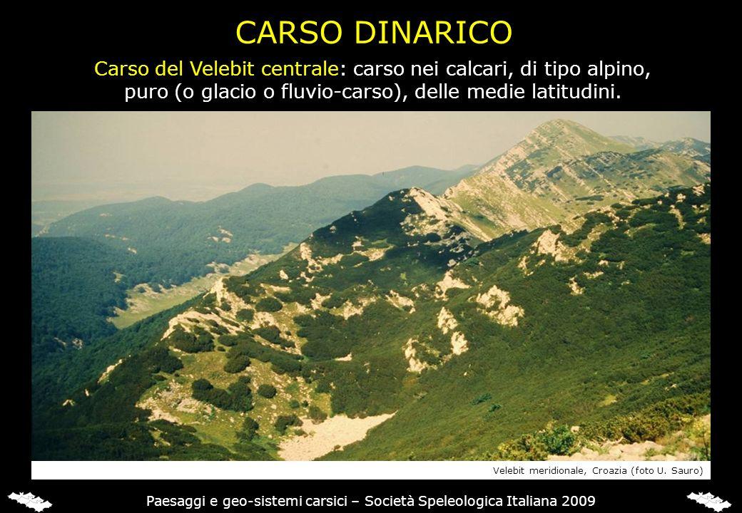 CARSO DINARICO Carso del Velebit centrale: carso nei calcari, di tipo alpino, puro (o glacio o fluvio-carso), delle medie latitudini. Paesaggi e geo-s
