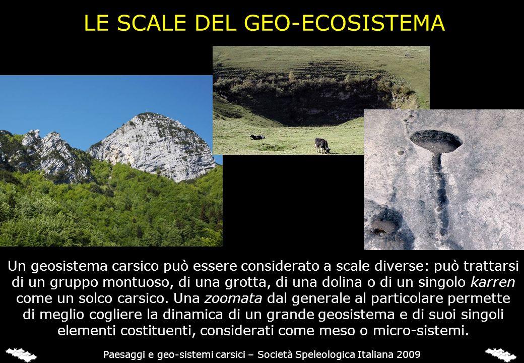 LE SCALE DEL GEO-ECOSISTEMA Un geosistema carsico può essere considerato a scale diverse: può trattarsi di un gruppo montuoso, di una grotta, di una d