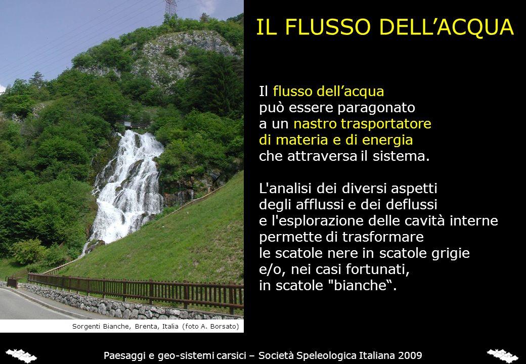 IL FLUSSO DELLACQUA Il flusso dellacqua può essere paragonato a un nastro trasportatore di materia e di energia che attraversa il sistema. L'analisi d