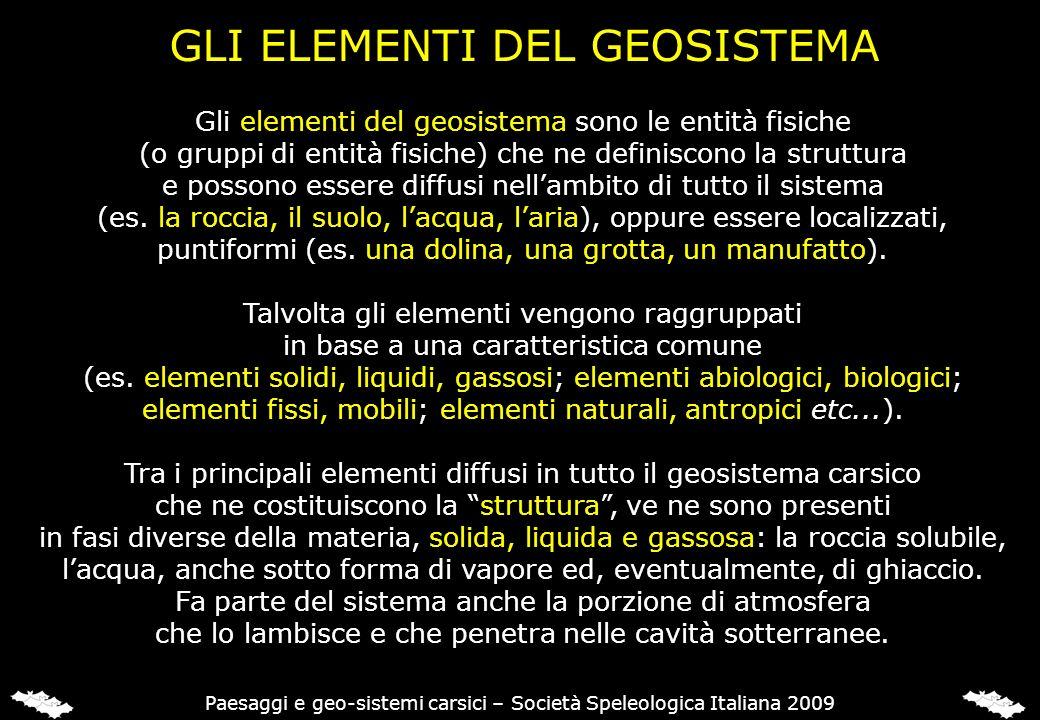 GLI ELEMENTI DEL GEOSISTEMA Gli elementi del geosistema sono le entità fisiche (o gruppi di entità fisiche) che ne definiscono la struttura e possono