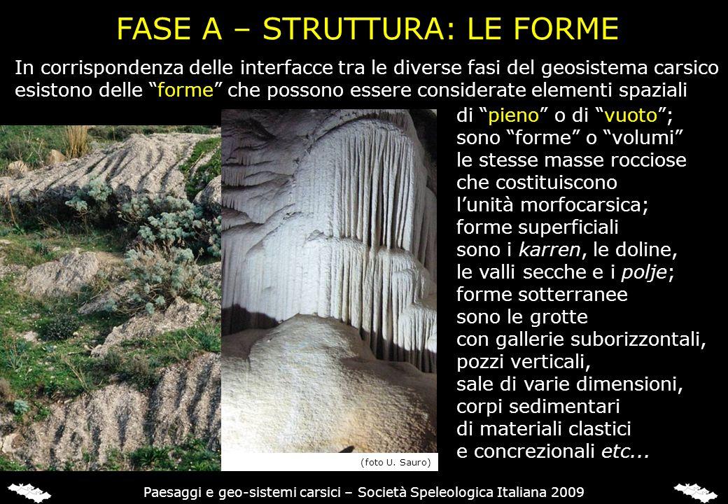 In corrispondenza delle interfacce tra le diverse fasi del geosistema carsico esistono delle forme che possono essere considerate elementi spaziali FA